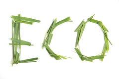 слово eco стоковое фото