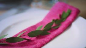 Сложенная розовая салфетка с зеленой ветвью лежа на белой плите сток-видео