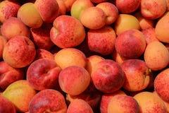 Сложенный зрелого запятнанного плодоовощ абрикоса Стоковое фото RF