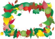 сложите листья Стоковые Фото