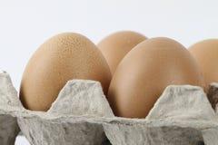 сломанный печь варящ живописание eggs неповрежденный прогресс некоторый поднос Стоковые Фотографии RF