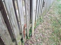 Сломленная деревянная загородка с доской хлопнула вне стоковое изображение