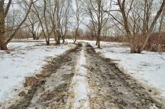 Сломленная дорога в древесинах Дорога идет переход, шевеля грязь стоковые изображения rf