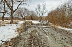 Сломленная дорога в древесинах Дорога идет переход, шевеля грязь стоковые фото