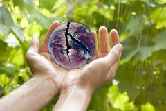 сломленная земля вручает удерживание Стоковое Фото