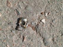 Сломленная пластичная диаграмма черепа на пакостном асфальте с камнями стоковое фото rf