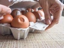 Сломленное коричневое яичко в комплекте Стоковые Фото