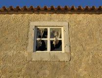 сломленное окно Стоковое Изображение