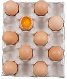 Сломленное яичко в коробке Стоковые Изображения RF
