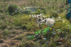 Сломленные стеклянные бутылки в траве Стоковое фото RF