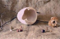 Сломленный бак с ветвями и сухим солнцецветом стоковая фотография