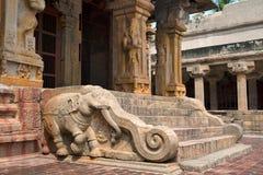 Слоны балюстрад, святыня Subrahmanyam, комплекс виска Brihadisvara, Tanjore, Tamil Nadu стоковые фото
