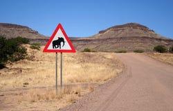 слоны скрещивания Стоковая Фотография