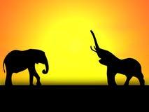 слоны 2 Стоковое Изображение