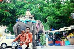Слон причиняя затор движения на индийских дорогах Стоковое Фото