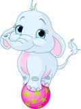 Слон цирка иллюстрация штока