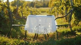 Служат таблица для романтичного обедающего в живописном месте около виноградника стоковое фото rf