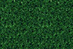Случайная зеленоватая картина природы s Стоковая Фотография RF