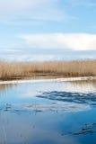 Смажьте заграждение сдерживания на озере после нефтяного пятна стоковая фотография