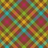 смелейшая шотландка картины Стоковые Изображения