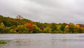 Смелейшие цвета осени Стоковые Фото