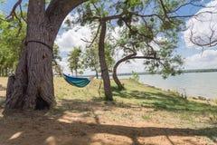 Смертная казнь через повешение гамака берега озера между днем деревьев солнечным Стоковое Изображение