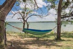 Смертная казнь через повешение гамака берега озера между днем деревьев солнечным Стоковая Фотография