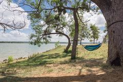 Смертная казнь через повешение гамака берега озера между днем деревьев солнечным Стоковые Изображения