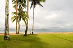 Смертная казнь через повешение гамака между кокосовыми пальмами на пляже Стоковые Изображения