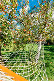 Смертная казнь через повешение гамака под яблоней с красными яблоками в дворе сельского дома Стоковые Фотографии RF