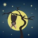 Смертная казнь через повешение летучей мыши на сухом дереве Иллюстрация штока