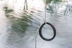 Смертная казнь через повешение качания автошины от дерева Стоковое фото RF