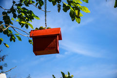 Смертная казнь через повешение небольшого дома на дереве стоковое фото