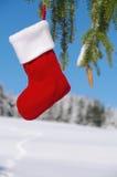 Смертная казнь через повешение носка Санты от дерева Стоковые Фото