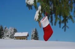 Смертная казнь через повешение носка Санты от дерева Стоковые Изображения RF