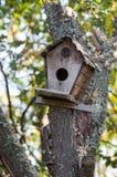 Смертная казнь через повешение дома птицы на дереве Стоковая Фотография