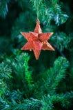Смертная казнь через повешение орнамента звезды рождества на рождественской елке Стоковое Фото
