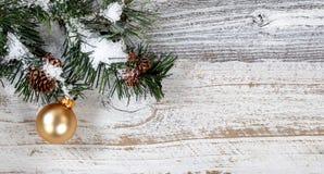 Смертная казнь через повешение орнамента золота рождества от снежной грубой ветви ели Стоковые Фотографии RF