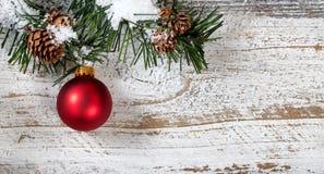 Смертная казнь через повешение орнамента рождества красная от снежной грубой ветви ели Стоковое Изображение