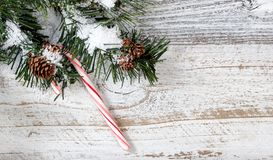 Смертная казнь через повешение орнамента тросточки конфеты рождества от снежной грубой ели Стоковые Изображения RF