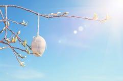 Смертная казнь через повешение пасхального яйца на ветви вербы на солнечный день Стоковое Изображение RF