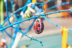 Смертная казнь через повешение пасхального яйца на ветви дерева Стоковая Фотография