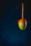 Смертная казнь через повешение пасхального яйца на хворостине Стоковое Изображение RF