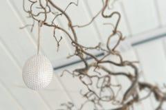 Смертная казнь через повешение пасхального яйца от ветви Стоковое Изображение