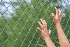 Смертная казнь через повешение руки на загородке звена цепи металла Стоковое Изображение RF