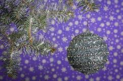 Смертная казнь через повешение шарика рождества серебряная на дереве с красивым bokeh Стоковые Изображения