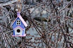 Смертная казнь через повешение Birdhouse на ветви дерева покрытой с льдом Стоковое фото RF