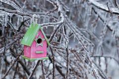 Смертная казнь через повешение Birdhouse на льде покрыла ветви дерева Стоковая Фотография