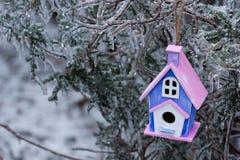 Смертная казнь через повешение Birdhouse на льде покрыла ветви дерева Стоковые Изображения RF