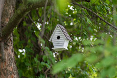 Смертная казнь через повешение Birdhouse от ветви дерева Стоковые Изображения
